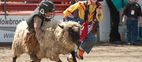 Cloverdale Rodeo and Country Fair Buy Tickets Cloverdale Rodeo