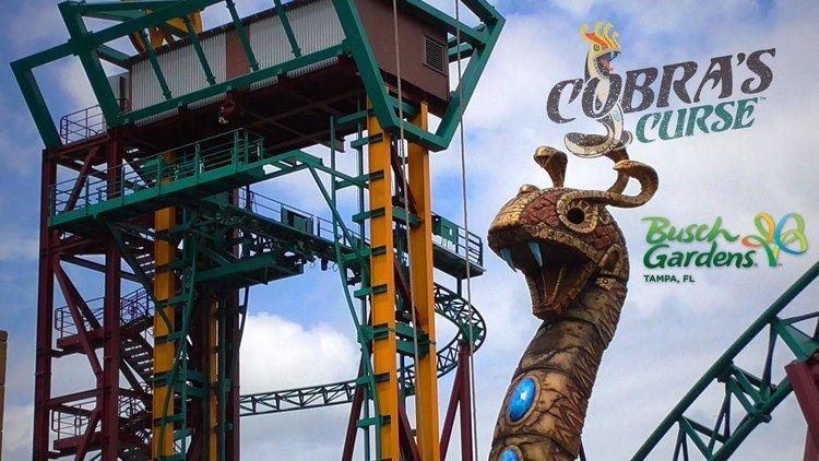 Cobra's Curse Cobra39s Curse Roller Coaster Construction Update and Elevator Lift