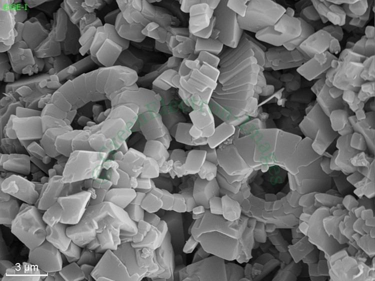 Coccolith Green Electron Images SEM Images Coccolith Debris and Micrite in