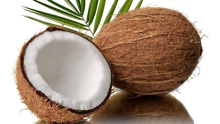 Coconut Going Nuts for Coconut Run Moore