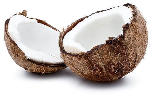Coconut Conscious Coconut Conscious Coconut