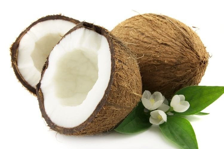 Coconut COCONUT OIL FOR LASHES WILL IT HELP Amalie Blog