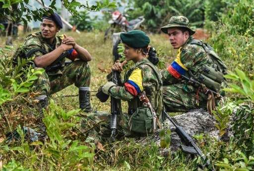 Colombian conflict FARC frog39 caught up in Colombian conflict