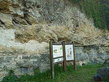 Coniacian httpsuploadwikimediaorgwikipediacommonsthu