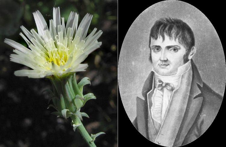Constantine Samuel Rafinesque Flora Urbana Constantin Samuel Rafinesque