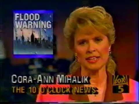 Cora-Ann Mihalik WNYW NY NEWSAugust 16 1993 Cora Ann Mihalik John Roland YouTube