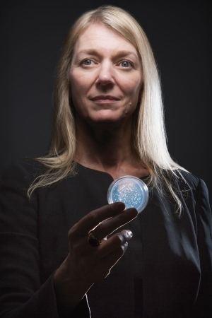 Cornelia Bargmann Neuroscience As the worm turns Nature News Comment