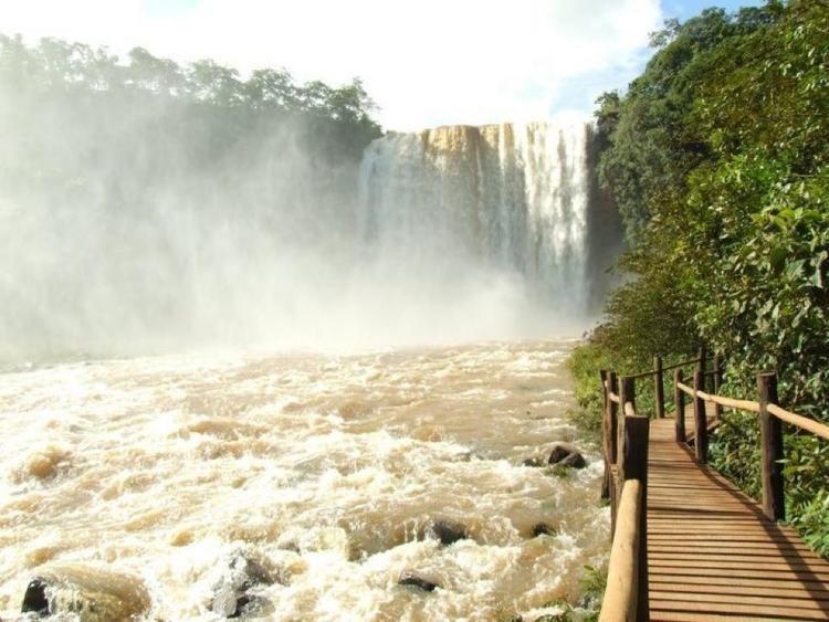 Costa Rica Mato Grosso do Sul fonte: alchetron.com