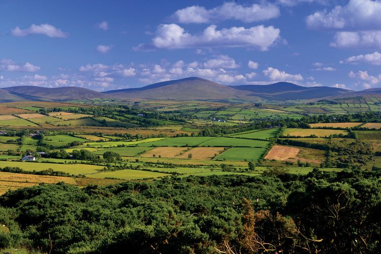 County Tyrone httpssmediacacheak0pinimgcomoriginalsd2