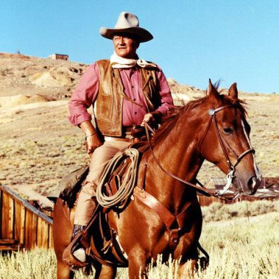 Cowboy statictvtropesorgpmwikipubimagesjohnwaynec