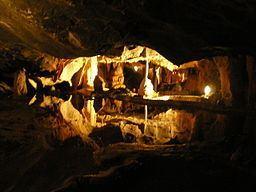Cox's Cave httpsuploadwikimediaorgwikipediacommonsthu