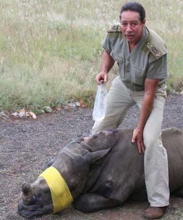 Craig Busch Lion Man Craig Busch Scammed and Threatened Big Cat Rescue