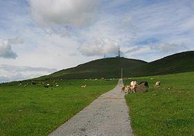 Craigowl Hill httpsuploadwikimediaorgwikipediacommonsthu