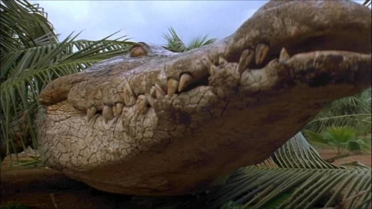 Crocodile 2: Death Swamp Crocodile 2 Death Swamp 2002 Trailer YouTube