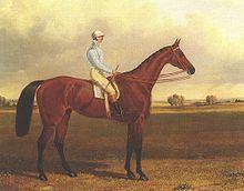 Crucifix (horse) httpsuploadwikimediaorgwikipediacommonsthu