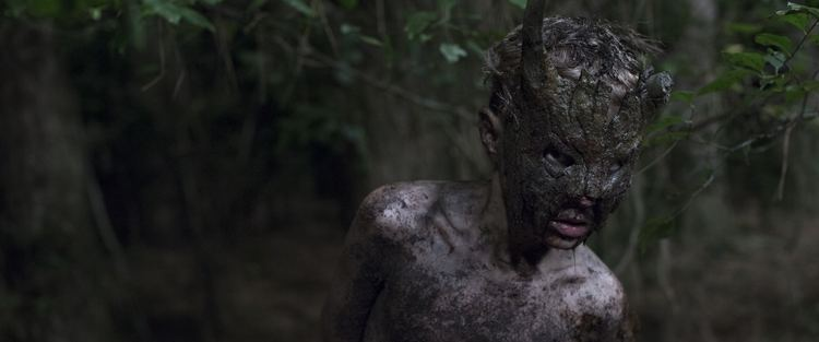 Cub (film) Fantastic Fest 14 Review Cub Is Kinetic Brutal and Graphic
