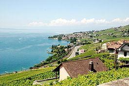 Cully, Switzerland Cully Switzerland Wikipedia
