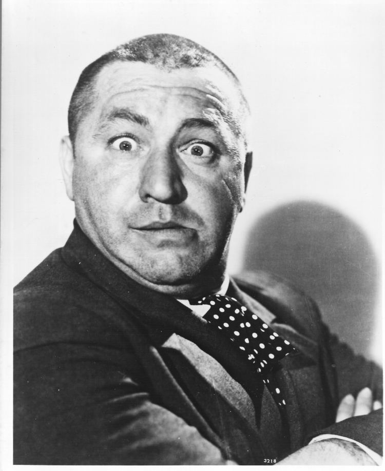 Curly Howard Curly Howard Quotes QuotesGram