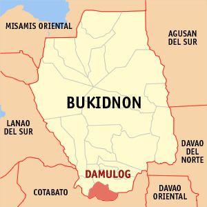 Damulog, Bukidnon