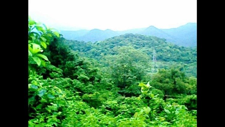 Dandakaranya Donkarayi Sileru river banks The Legacy of DandakaranyaUnimid