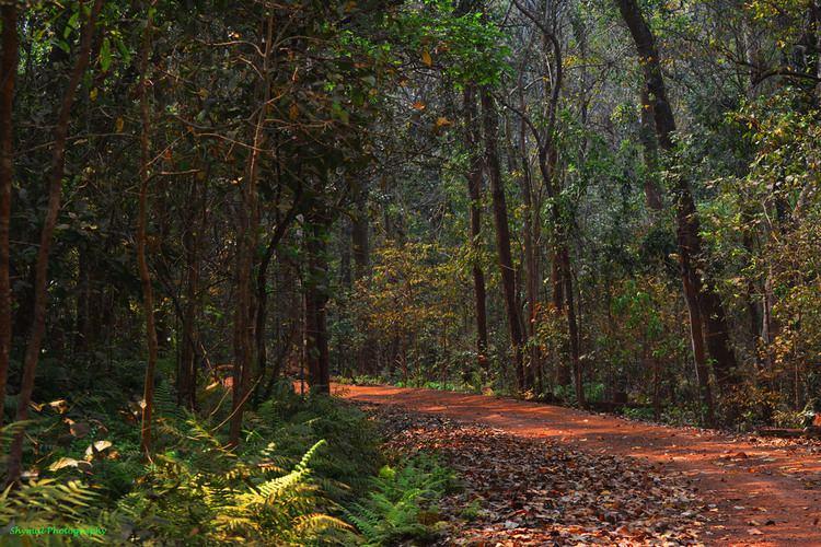 Dandakaranya DANDAKARANYA CHATISGHAR INDIA shymal nandy Flickr