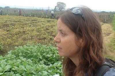 Danielle Nierenberg How Food Tanks Danielle Nierenberg Wants to Save the World HuffPost