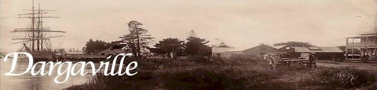 Dargaville in the past, History of Dargaville