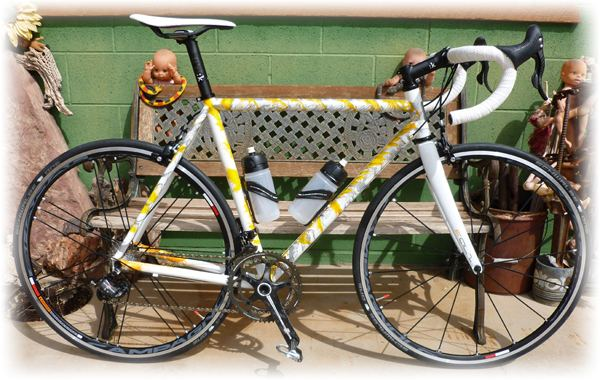 Dario Pegoretti Pegoretti Bicycles Dreamride