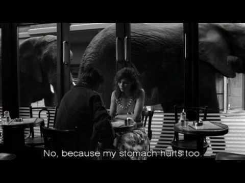 Dark Horse (2005 film) Dark Horse 2005 Teaser 1 HQ English Subtitles YouTube