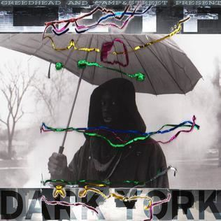 Dark York httpsuploadwikimediaorgwikipediaeneeeDar