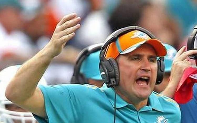 Darren Rizzi Dolphins promote Darren Rizzi to assistant head coach Miami Herald