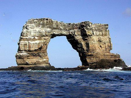Darwin Island httpsuploadwikimediaorgwikipediacommonsbb