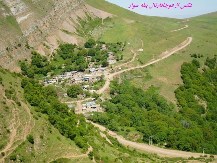 Dashdibi
