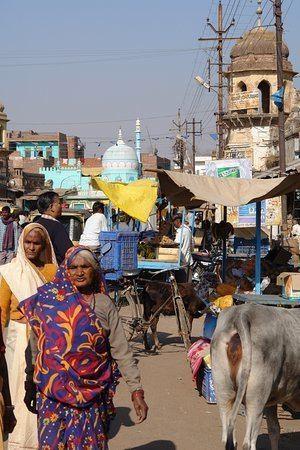 Datia India Picture of Bir Singh Palace Datia TripAdvisor