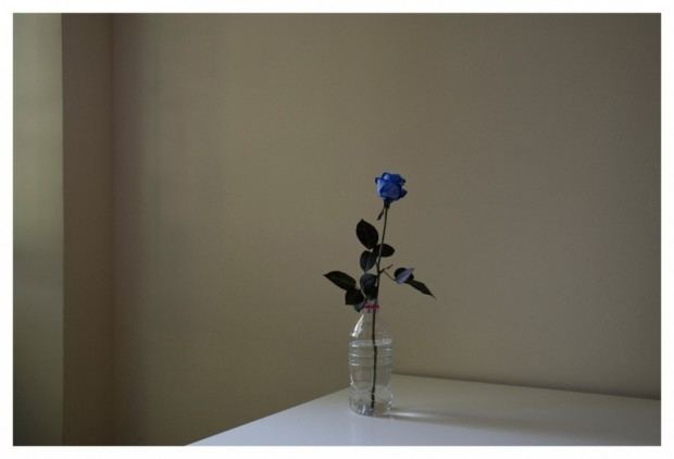 David Adika David Adika Braverman Gallery