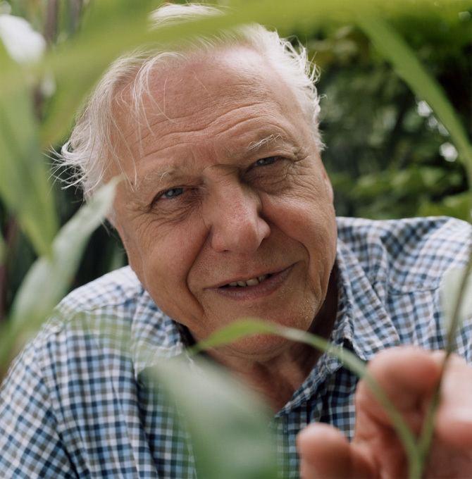 David Attenborough cleantechnicacomfiles201509SirDavidAttenbor