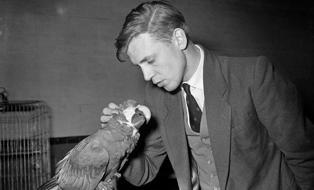 David Attenborough Sir David Attenborough interview for 60 Year On Film and just like