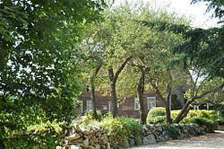 David Burnham House httpsuploadwikimediaorgwikipediacommonsthu