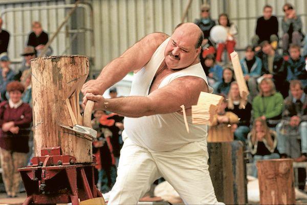 David Foster (woodchopper) David Foster (woodchopper)