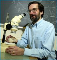 David Jablonski evolutionberkeleyeduevolibraryimagesinterview