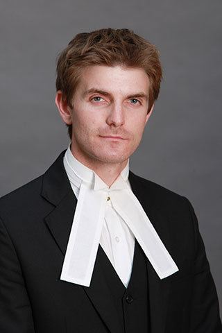 David Perry (barrister) httpswwwlawlibraryieBarristerPhotos112003