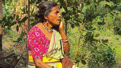 Daya Bai Daya Bai with SBS Malayalam SBS Your Language