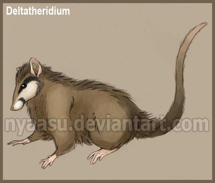 Deltatheridium Deltatheridium by Nyaasu on DeviantArt