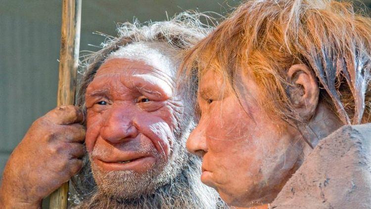 Denisovan Who among us has Neanderthal Denisovan DNA Fox News
