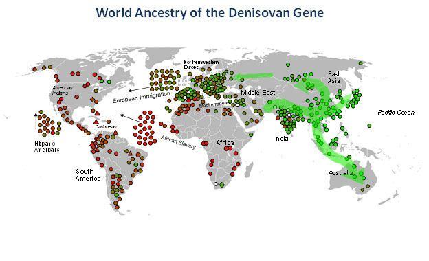 Denisovan Another DNA Cousin To Humans spydersden