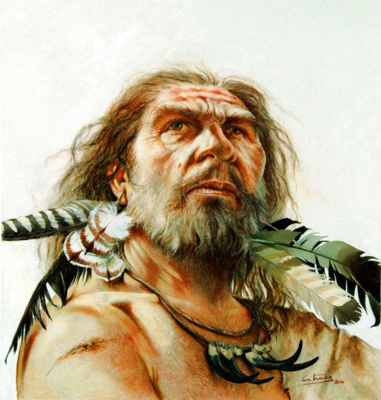 Denisovan Denisovans Mysterious Homo Species Interbred with Modern Humans in