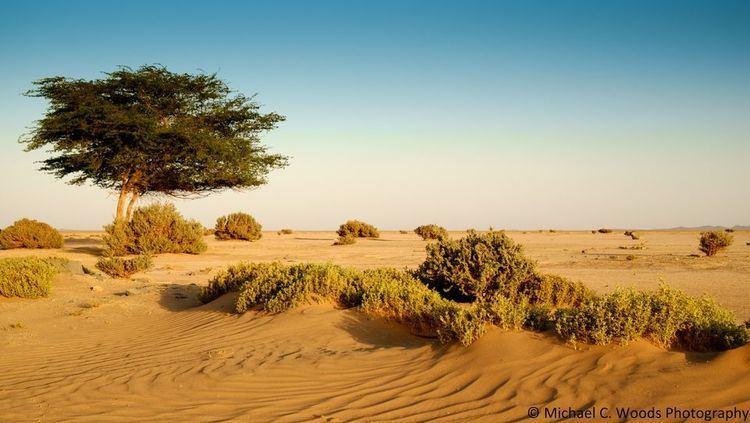 Desert Deserts National Geographic