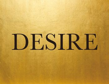 Desire Astek Inc