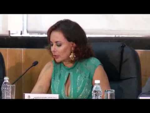 Diana Bernal Once Noticias Falla estructural el Rgimen de Incorporacin Fiscal