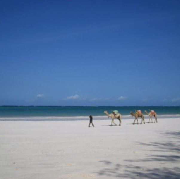 Diani Beach httpslh6googleusercontentcomyu9T7vVVJhEAAA
